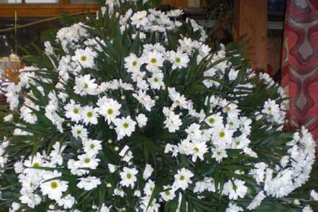 Cveće za groblje Zovko.