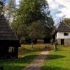 Selo Tršić